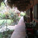 Photo of Jungle Lodge
