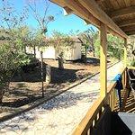 Photo of Camping Village Sos Flores
