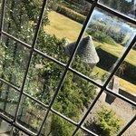 A window view...