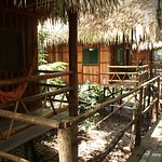 Tariri Amazon Lodge Photo
