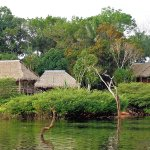 Photo of Tariri Amazon Lodge
