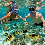 We can book an exciting snorkeling adventure for you, then you can be goggling all day long...