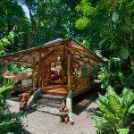 Photo de Congo Bongo Ecolodges Costa Rica