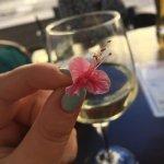 Foto de Wine & Pisco