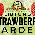 Libtong Strawberry Garden