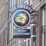 Foto di The Bulldog Hotel