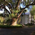 Photo de Farnsworth House