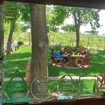 Looking through the window to the picnic area