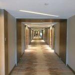 Corridor  in Novotel