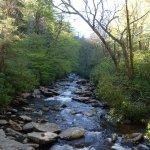 hiking along the Alum Cave Creek