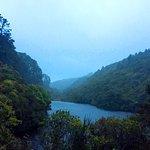 Zealandia at Dusk during a wet evening.