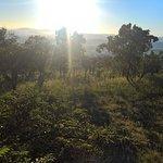 Photo de Pakamisa Private Game Reserve