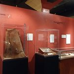 Sharing exhibits with other area museums