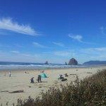 صورة الشاطئ
