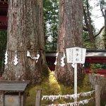 Nikko Futarasan Jinja Shrine Foto
