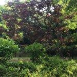 Photo of Kuraki Park
