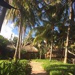 Ảnh về Việt Thanh Resort