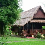 The wonderful Paddy House
