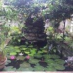 Photo de French Lotus Guest House