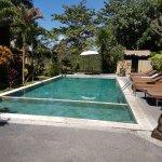 La piscine ( vue du coin repas)