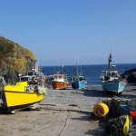 Cadgwith Cove fishing village