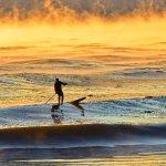 EOS Surf & Revolution Board Shop