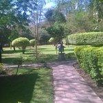 Lake Naivasha Simba Lodge Foto