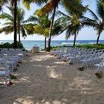 Coconut Palm Grove, where many beautiful weddings are held