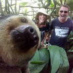 Sloth Selfie at Club Rio Ecological Preserve