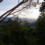 Photo de Villa Le Rondini