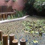 Photo of Condominio Residencial Pipa Park