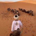 Foto de Camels House