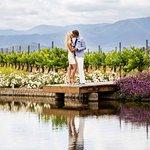 Wine Country Romance at Ponte Vineyard Inn
