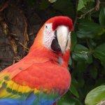 Foto de Santa Barbara Zoo