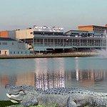 Delta Downs Hotel & Casino Photo