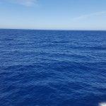 Photo of Gozo Ferry