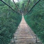 Photo of Monkeyland Primate Sanctuary