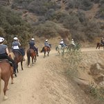 Photo of Sunset Ranch Hollywood