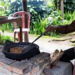 Roasting Bali Coffee beans at Coffee plantation