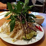 Bean Sprouts_large.jpg