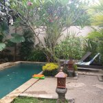 Private Pool with pool toys for kids in Villa 3