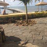 Foto de Pelican Reef Villas Resort