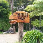 You found us! The Hekerua Lodge Backpackers is surrounded by stunning New Zealand native bush.