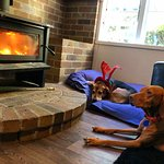 We burn the fire in winter time! Mayday and Chica love it.