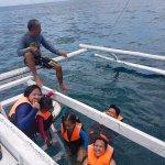 whale shark encounter