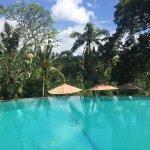 Photo of Bucu View Bungalows