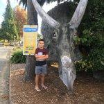 All Seasons Holiday Park Rotorua