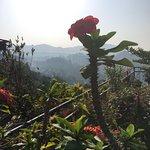 Photo de Ella Gap Panorama
