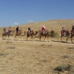 Fun camel ride in the Negev desert!