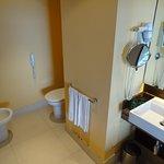 Sink, Toilette & Bidet